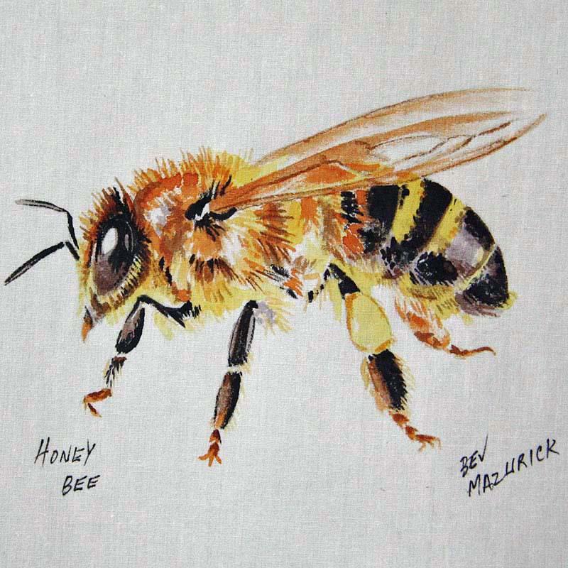 © Bev Mazurick - Honey Bee