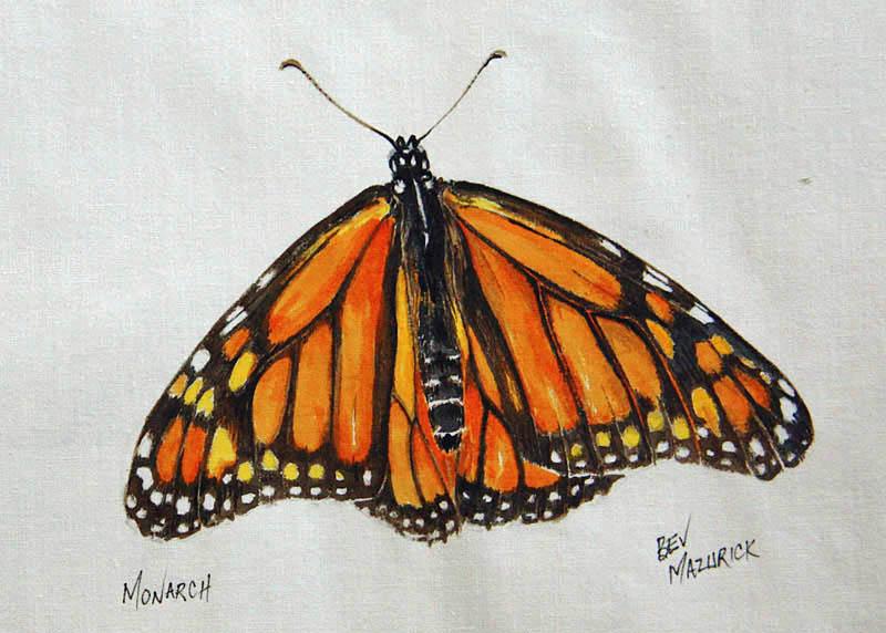 © Bev Mazurick - Monarch Butterfly