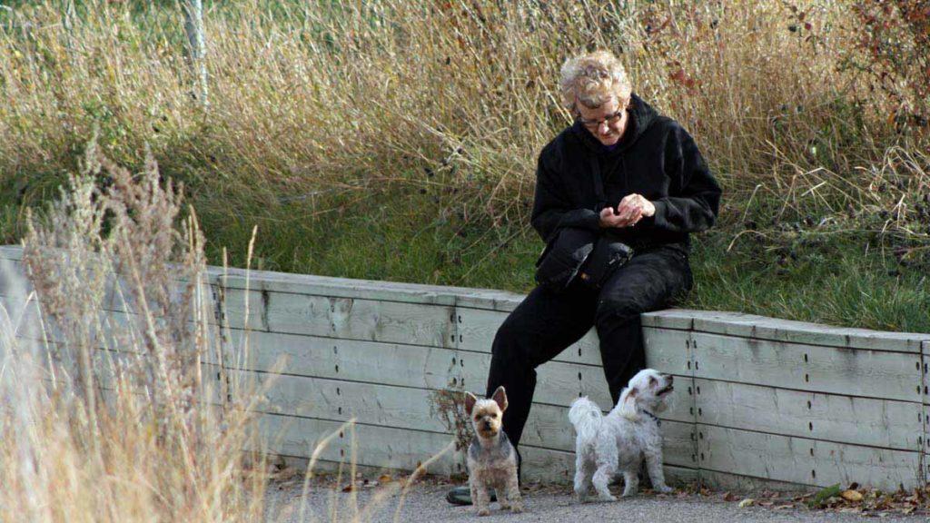 © Bev Mazurick - Walking at Pavan Park