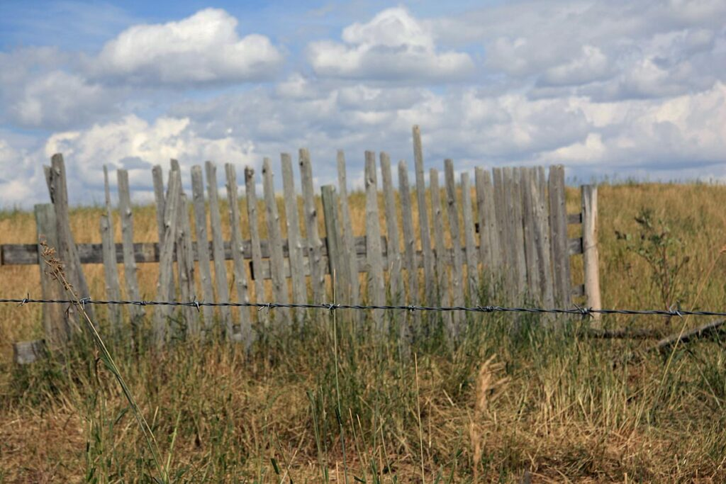 Snow fencing near Pincher Creek Alberta